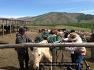 몽골 자유여행 두가지.. 유목생활 캠핑승마 & 유목생활 자유여행